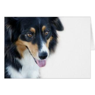 Aussie Dog Blank Card