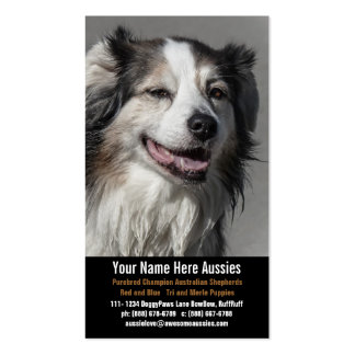 Aussie Dog Breeder Australian Shepherds Double-Sided Standard Business Cards (Pack Of 100)