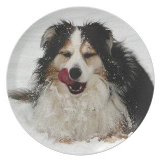 Aussie Dog Tongue Dinner Plate