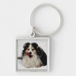 Aussie Dog Tongue Keychain