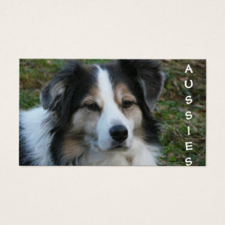 Aussie Dogs Purebred Breeder Business Card