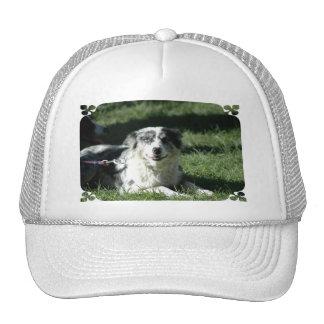 Aussie Herd Dog Baseball Hat