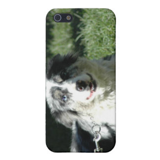 Aussie Herd Dog iPhone 4 Case