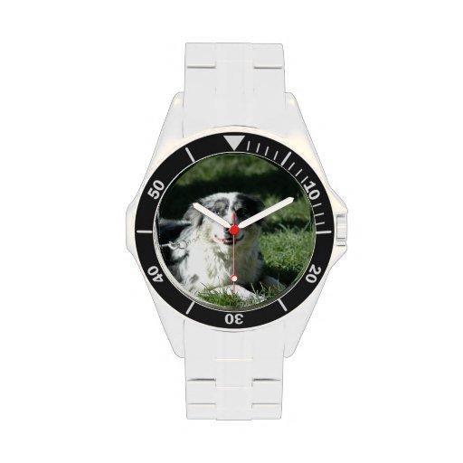 Aussie Herd Dog Wristwatch