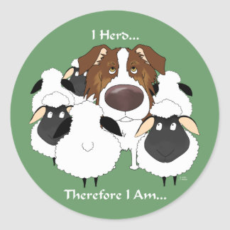 Aussie - I Herd Therefore I Am Classic Round Sticker