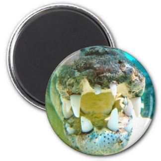 Aussie Icon - Big Croc Terry - Magnet