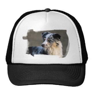 Aussie Looking Left Hat