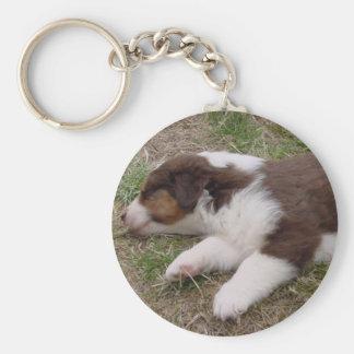 aussie puppy sleeping keychain
