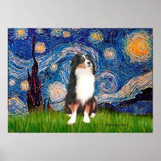 Aussie Shep Tri2 - Starry Night Posters