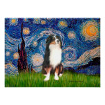 Aussie Shep (Tri2) - Starry Night Posters
