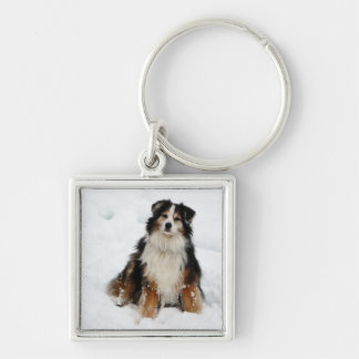 Aussie Shepherd Dog in Snow Silver-Colored Square Keychain