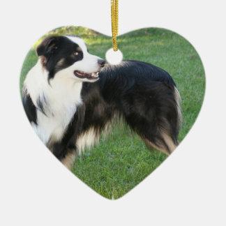 Aussie Shepherd  Ornament