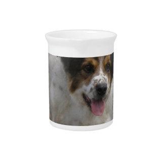 Aussie Shepherd Puppy Pitcher