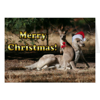 Aussie Style Christmas Kangaroos Cards