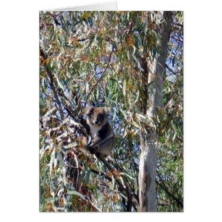 Aussie_Wild_Koala_Bear, _Vertical_Note_Card. Tarjeta Pequeña