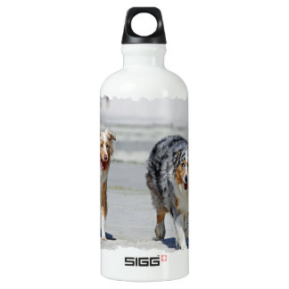 Aussies - 1st Day of Summer Beach Stroll Aluminum Water Bottle