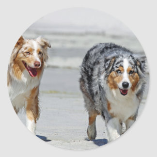 Aussies - 1st Day of Summer Beach Stroll Classic Round Sticker