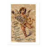 Austen's Forest Flower-1908 - distressed Post Card