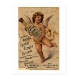 Austen's Forest Flower-1908 Post Card