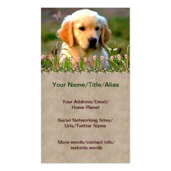 Austin Golden Labrador Puppy Business Cards