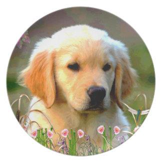 Austin Golden Labrador Puppy Melamine Plate
