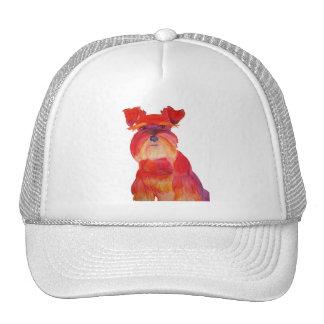 Austin in Red Trucker Hat