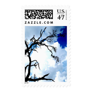"""Austin Sky Tree"" JTG Art Postage Stamp"