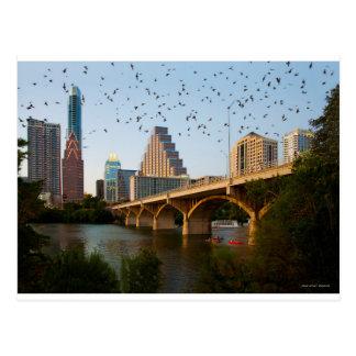 Austin, Texas Congress Bridge Bats Postcard