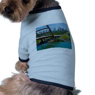 Austin, Texas from 360 Bridge Dog Clothing