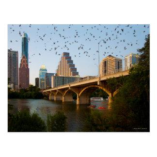 Austin, Texas with Bats Postcard