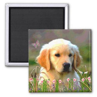 Austin The Golden Labrador 2 Inch Square Magnet