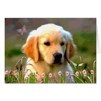 Austin The Golden Labrador Card