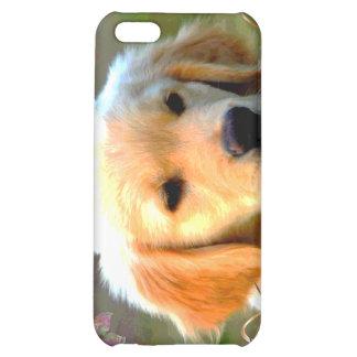 Austin The Golden Labrador iPhone 5C Cases