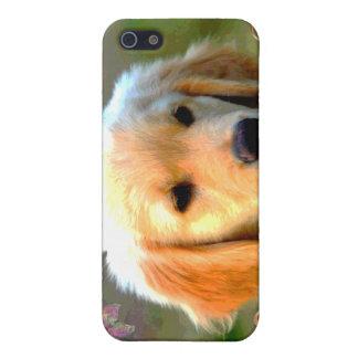 Austin The Golden Labrador iPhone SE/5/5s Cover