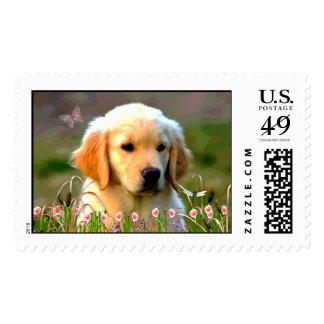 Austin The Golden Labrador Stamps