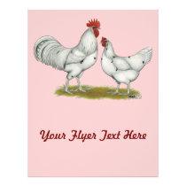 Austra White Chickens Flyer