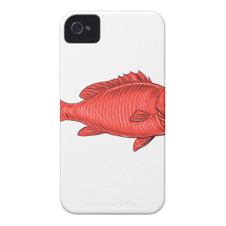 Australasian Snapper Swimming Drawing iPhone 4 Case-Mate Case