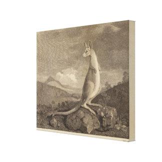 Australia Canvas Prints