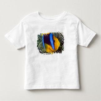 Australia, Great Barrier Reef, Anemonefish T-shirt