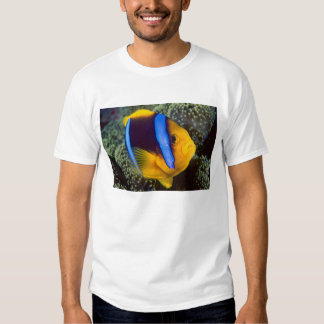Australia, Great Barrier Reef, Anemonefish T Shirt