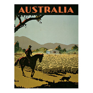 Australia In The Sun Vintage Travel Postcard