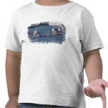 Australia, isla de Macquarie subantarctic. Real Camiseta