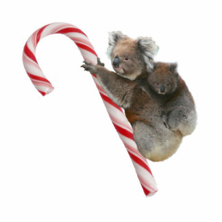 Australia Koala Bears and Candy Cane Statuette