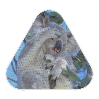 Australia, Koala Phasclarctos Cinereus) Bluetooth Speaker