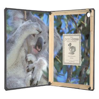 Australia, Koala Phasclarctos Cinereus) Cover For iPad Air