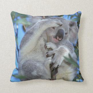 Australia, koala Phasclarctos Cinereus) Cojín