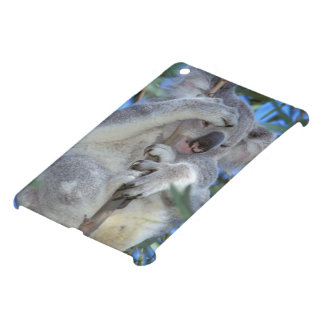 Australia, Koala Phasclarctos Cinereus) iPad Mini Cases