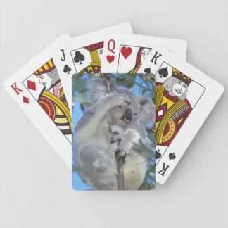 Australia, Koala Phasclarctos Cinereus) Playing Cards