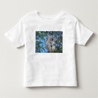Australia, Koala Phasclarctos Cinereus) Toddler T-shirt