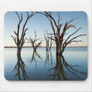 Australia, Murray River Valley, Barmera, Lake Mouse Pad